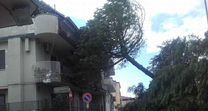 VIDEO Violenta tromba d'aria tra Fratta e Acerra, danni e disagi